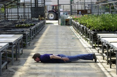 Greenhouseplanking